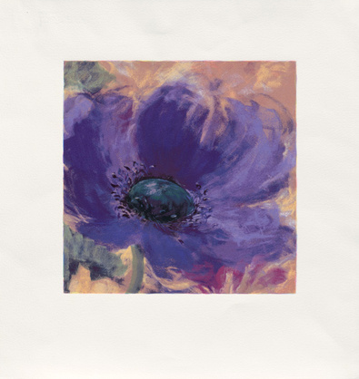 Nel Whatmore Minuetta Blue Poppy