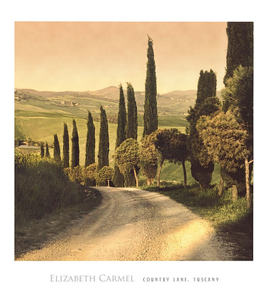Elisabeth Carmel Country Lane Tuscany