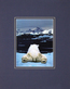 Wolfe art dream of a polar bear medium