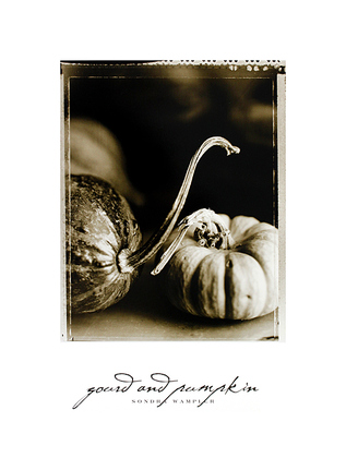 Sondra Wampler 2er Set 'Gourd and Pumpkin' + 'Quince and Pear'