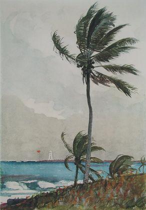 Homer Winslow Palme  Nassau