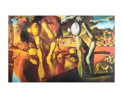 Salvador Dali Metamorphosis of Narcissus