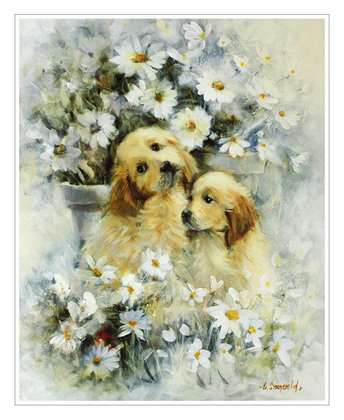Gerry Groeneveld Hunde