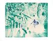 Stangl reinhard amazonas 3 medium