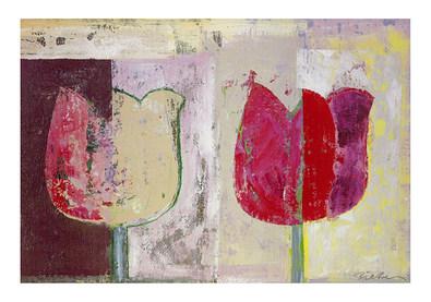Pieter L. Schotmann Tulip Variations I