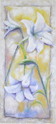 Rian Withaar Blume 5
