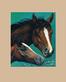 Lluis Bargallo Llurba Zwei Pferde