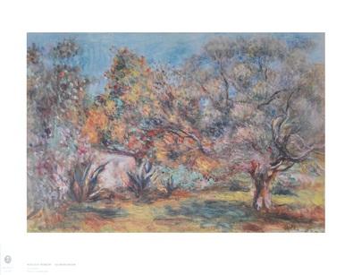 Pierre Auguste Renoir Olivengarten