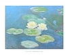 Claude Monet Nympheas reflets verts