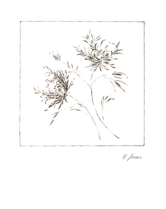 Horst Jonas 2er Set 'Wispy Flowers I + II'