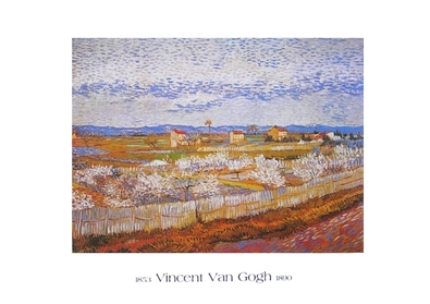 Vincent van Gogh Blühende Pfirsichbäume in La Crau