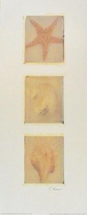 Claire Lerner Starfish Panel