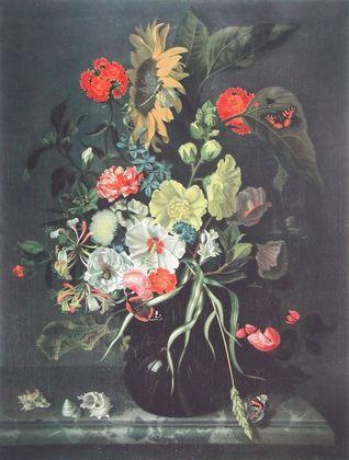 Maria van Oosterwyck Blumen und Muscheln