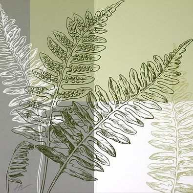 Hanna Vedder 4er Set 'Abstract Fern' + 'Fern' + 'Meadow' + 'On the Green'