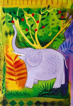 Nicht bekannt Elefant