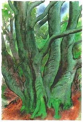 Guenter Grass Bäume I