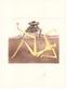 Dali salvador don quijote  f    das herz aus wahnsinn 47969 medium