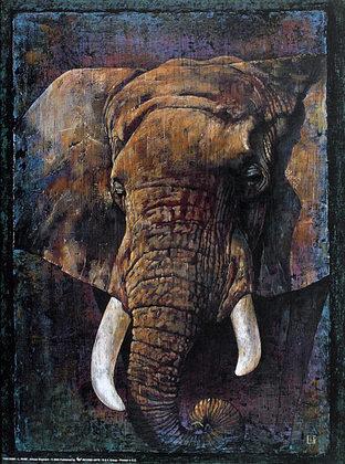 L. Pane 2er Set 'African Elephant' + 'African Leopard'