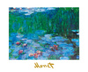 Monet claude nympheas 41202 medium