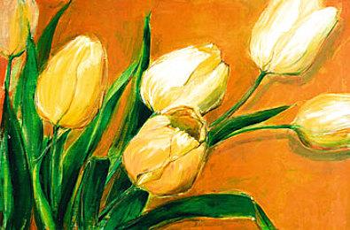 Elisabeth Krobs Tulipa Nova