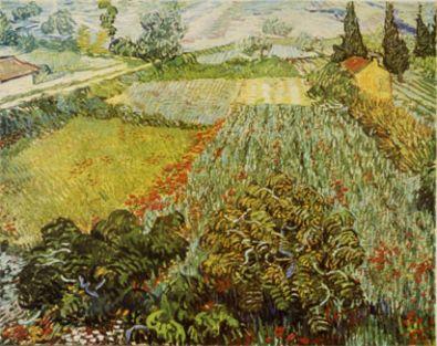 Vincent van Gogh Mohnfeld