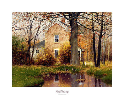Ned Young Quiet Reflections
