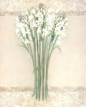 Elisabeth Brownd White Mirage I