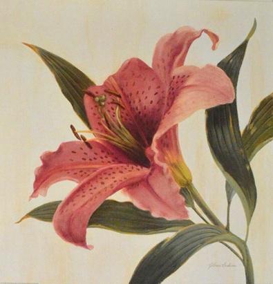 Gloria Eriksen Field Lily