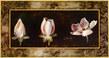 Fabrice de Villeneuve 4er Set 'Awakening Rose' + 'Awakening Calla' + 'Awakening Campanula' + 'Awakening Lily'