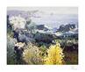 Omar Hamdi Malva Griechische Landschaft (klein)