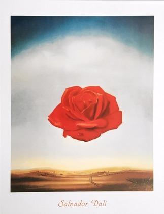 Salvador Dali Rose meditative