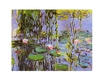 Monet claude nympheas ausschnitt medium