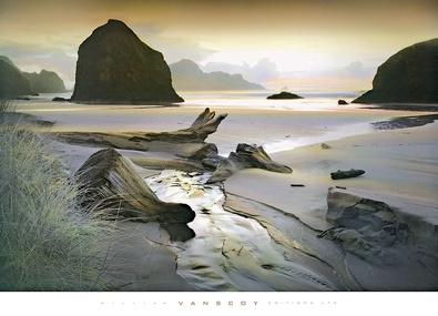 William Vanscoy She sleeps in the sand