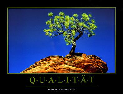 Motivation Qualitaet