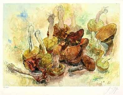 Guenter Grass Stilleben mit Pilzen
