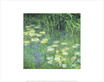 Monet claude water lilies morning detail medium