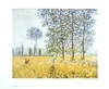 Monet claude felder im fruehling medium