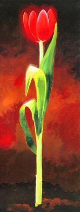 Karsten Kirchner 2er Set 'Rote Tulpe' + 'Gelbe Tulpe'