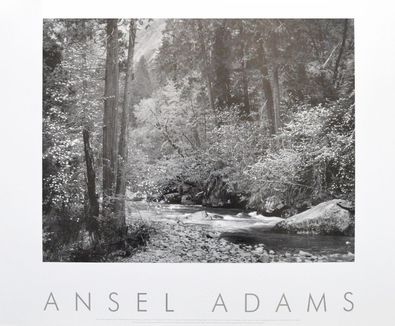 Ansel Adams Tenaya Creek