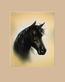 S. Poorter Portraet Pferd