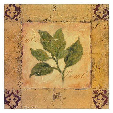 Shari White 4er Set 'Salomon's Seal' + 'Lady Fern' + 'Bamboo Palm' + 'Paradise Palm'