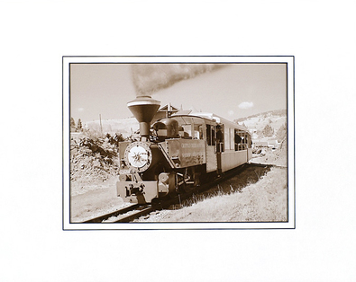Mark Roth Steam Travel