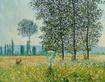 Monet claude felder im fruehling 41826 medium