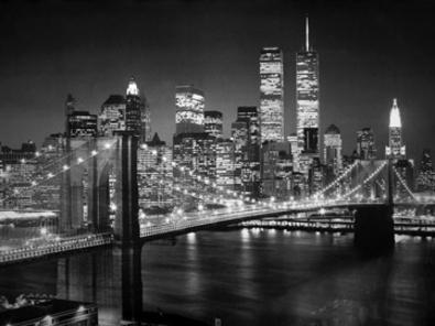 Henri Silberman Brooklyn Bridge