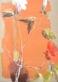 C. Bernarduchene Grand Hibiskus a voie ocre