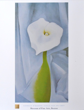 Georgia O'Keeffe Calla Lily on Grey