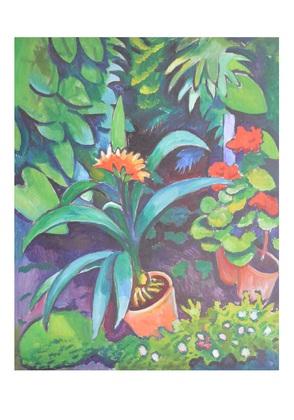 August Macke Blumen im Garten, Clivia und Pelargonien, 1911