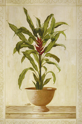 Welby Potted Palm 2