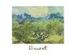 Van gogh vincent landschaft mit olivenbaeumen medium