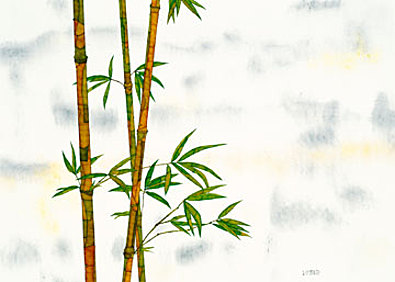 Michael Ferner Bambus